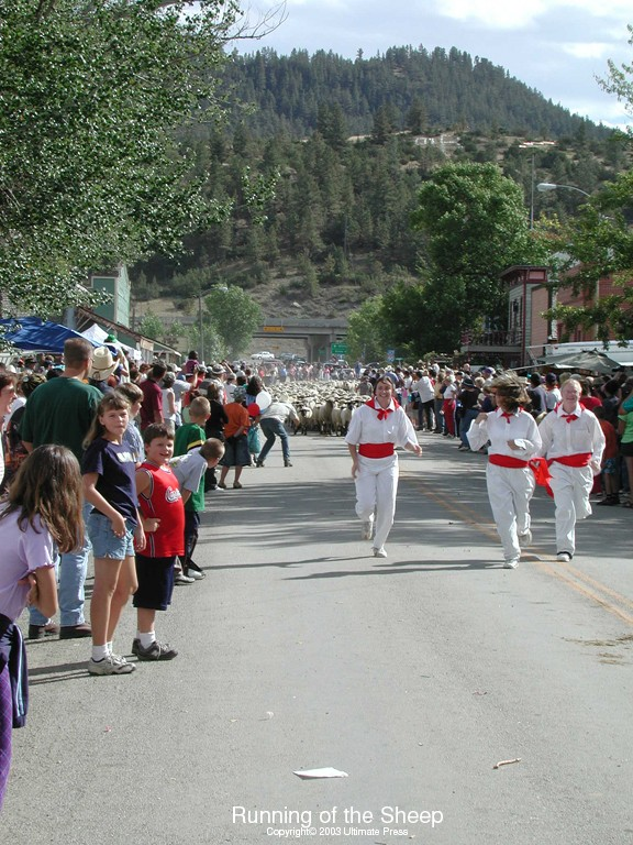 Sheep Run