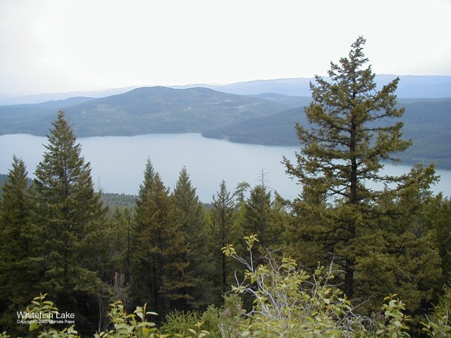 Whitefish Lake 2