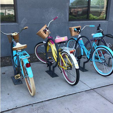 Bicycle Sales & Rental