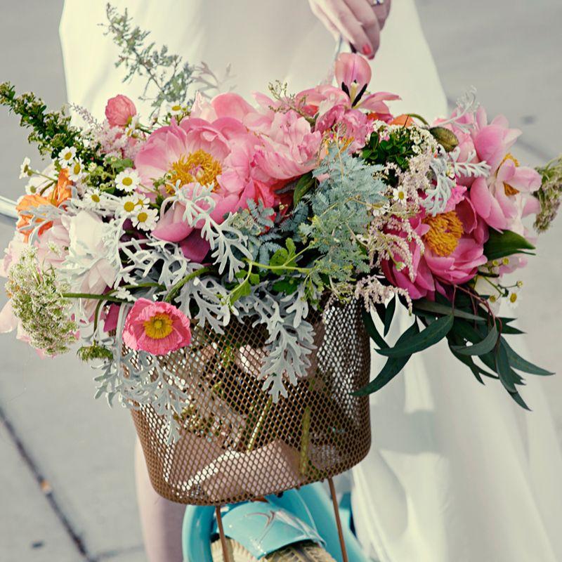 Wedding Planning & Venues