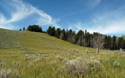 Antone Forest Service Cabin Montana