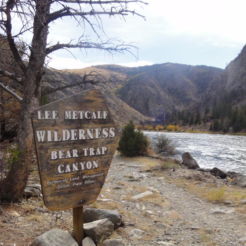 Beartrap Canyon