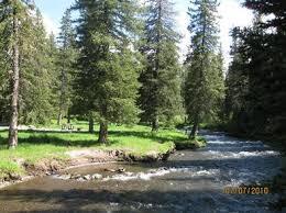 Langohr Campground Hyalite Canyon Recreation Area Bozeman Montana