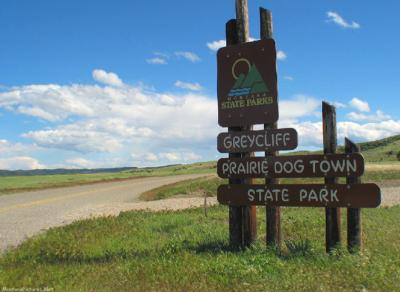 Prairie Dog Town Greycliff Montana