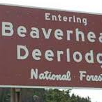 Beaverhead-Deerlodge National Forest