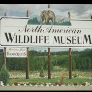 North American Wildlife Museum