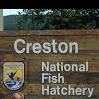 Creston Fish Hatchery