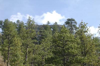Mission Canyon Montana